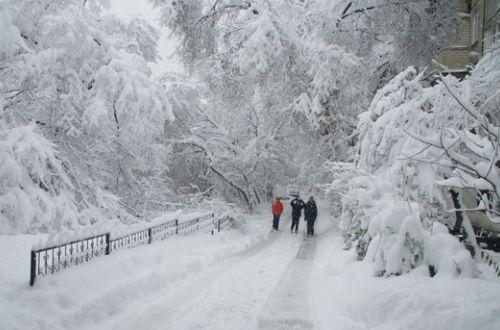Будет ли зимой снег: метеорологи дали прогноз