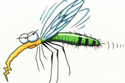 Вот почему комариный укус так чешется
