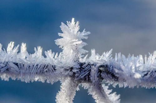 Первые морозы не заставят себя ждать: синоптики - о погоде в ноябре