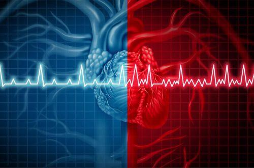 Медики подсказали, с помощью каких продуктов можно укрепить сердце и сосуды