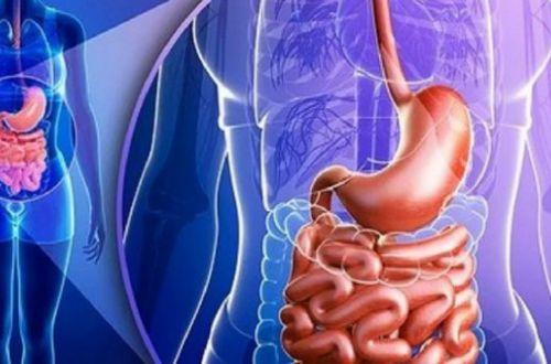 Как уберечь себя от болезней, восстановив микрофлору кишечника
