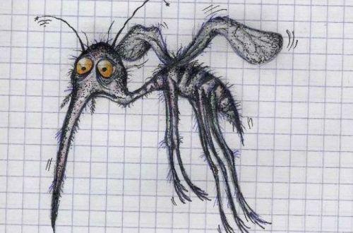 Названы запахи, которые заставят комаров отказаться от вашей крови