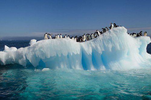 Станция в Антарктиде заявила о ЧП: ученые твердят, что такого еще не было