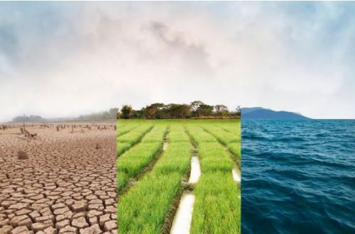 Весна засушит, осень заморозит: синоптик дала неожиданный прогноз на 2021 год