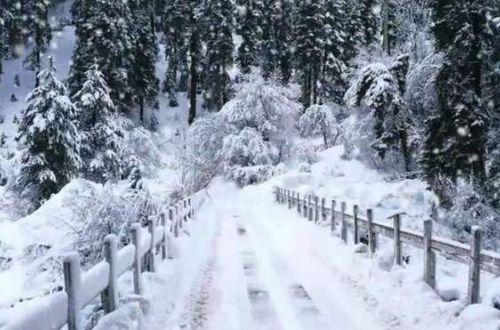 15 января почти по всей Украине будут снегопады и морозы