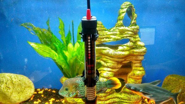 Надежные обогреватели для аквариума