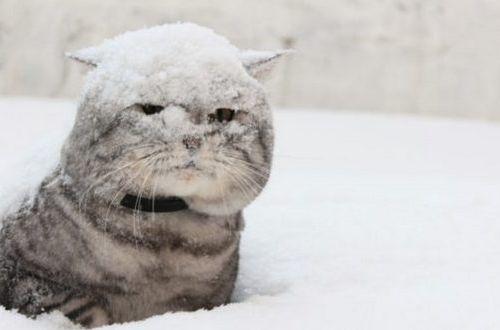 В Украину пришло потепление, но ненадолго: синоптики ждут новую волну морозов