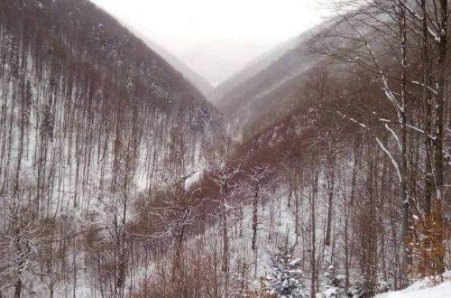 Снегопады в Карпатах: есть угроза схода лавин