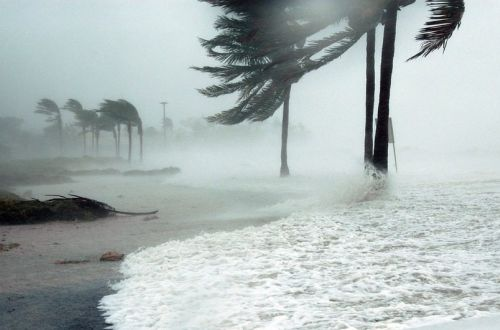"""В Тихом океане образовался первый в этом году супертайфун """"Суриге"""""""