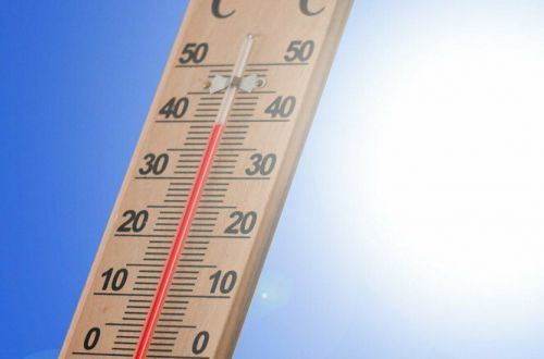 В ООН спрогнозировали самый теплый год за всю историю