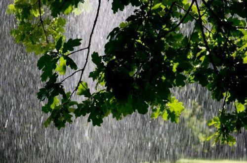 """Ливни, град и грозы: синоптик предупредил украинцев об июньском """"потопе"""""""