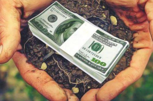 Рынок земли в Украине: названа сумма налога за продажу участка